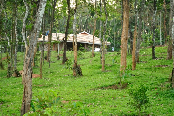 Our villa at Blooms Green, Wayanad.