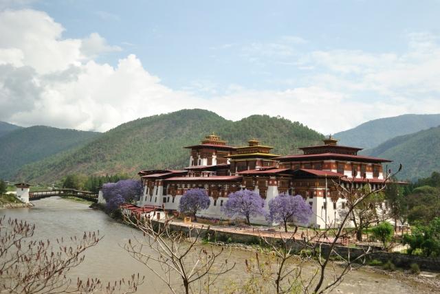Punakha Monastery.