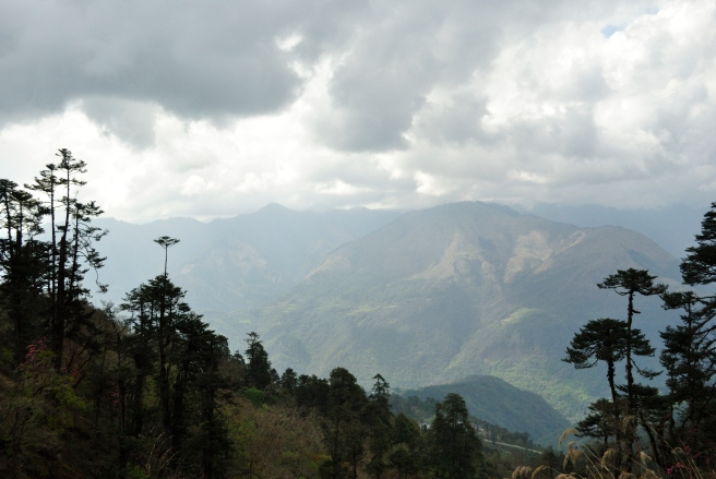 tashi Delek, Bhutan. I'll miss you.