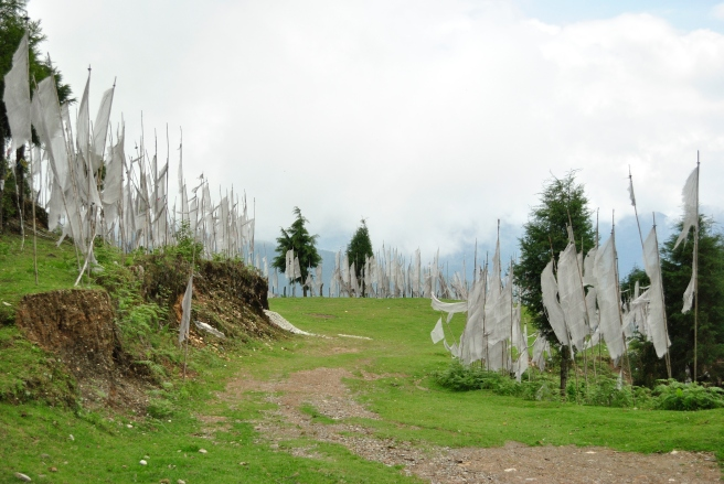 Prayer flags dot the landscape across Bhutan. This particular location, though, crept up on us out of nowhere. It's a green pasture surrounded by  pure white prayer flags fluttering away. Peaceful and dreamy place.