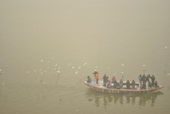 6:30 a.m in the morning, the waters are covered in dense fog. Sometimes, when the fog dissipates in parts, one can watch seagulls travelling with the boats, as the oarsman throws fish food into the water.