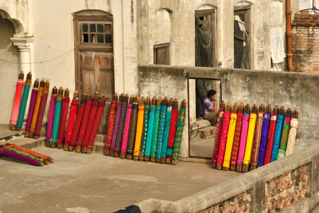 Banarasi weaves sunbathing.